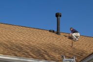 Professional Roof Services