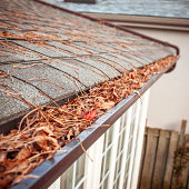 seasonal roof maintenance